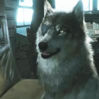 D.D. (Perro Diamante) fue la mascota de la empresa militar privada Diamond Dogs durante la década de 1980. Al igual que su propietario, Venom Snañe, el perro llevaba un parche sobre su ojo derecho.